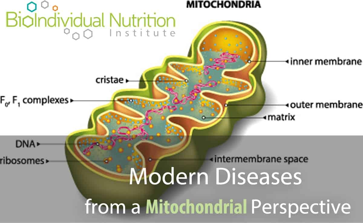 Modern Diseases from a  Mitochondrial Perspective